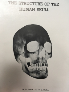 skull radiograph